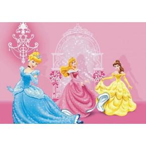 Disney Hercegnős rózsaszín poszter