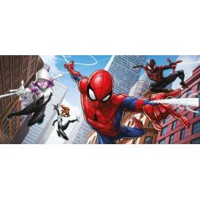Pókember, Spiderman poszter